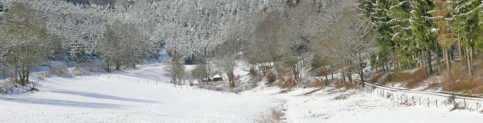 Mirmketal Benolpe im Winter; Foto: Otto Kordes