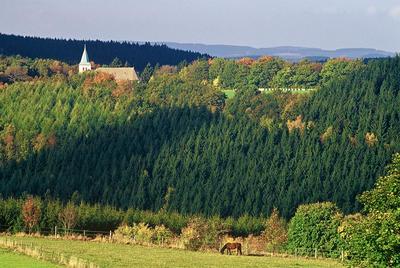 Kohlhagen Panorama und Pferd